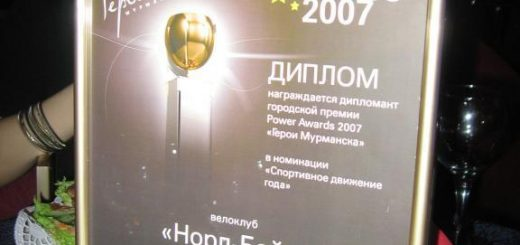 Power awards 2007